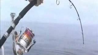 jigging master 300 power spell vs140lb bft
