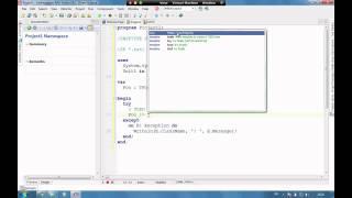 Delphi XE2 Documentation Insight