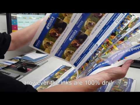 Stag Print, Baldwin UV LED Retrofit, Sakurai Sheetfed Printing Machine