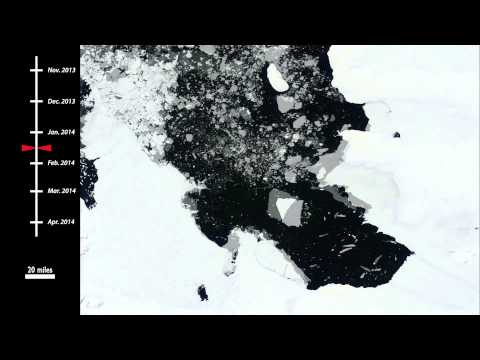 Massive iceberg six times the size of Manhattan drifts away from Antarctic glacier