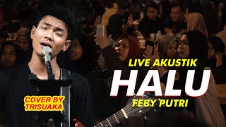 Download lagu HALU - FEBY PUTRI LIVE AKUSTIK COVER BY TRI SUAKA