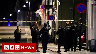 Norway bow and arrow suspected killer known to police, and feared radicalised - BBC News