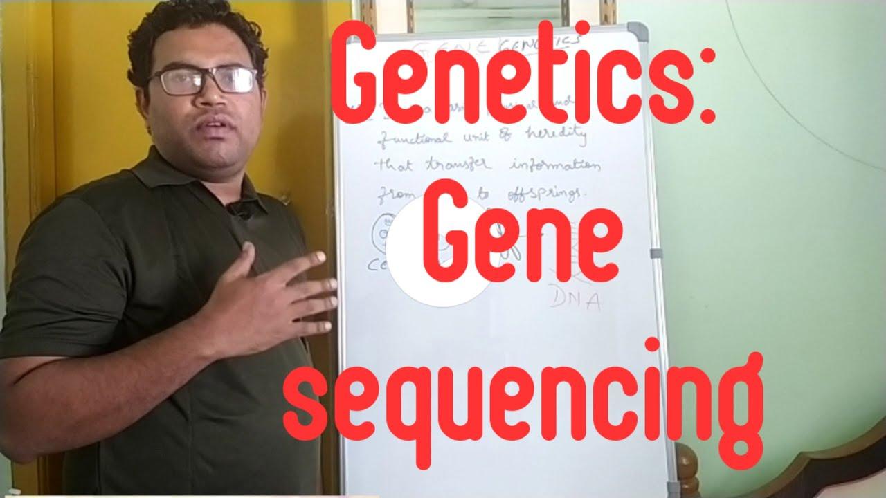 Download Genetics:Gene sequencing