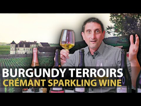 wine article Burgundys Great Terroir For Sparkling Wines Cremants De Bourgogne By Louis Bouillot