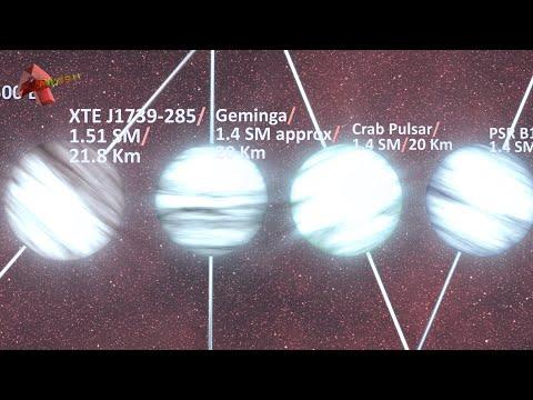 Neutron Stars: Pulsars, Magnetars, Millipulsars