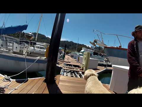 Boat Life - Dock under construction