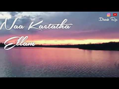 Rasaathi pola song lyrics ..Avan ivan..whatsapp status video ..love linezzz