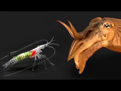 Shrimp made using a straw