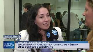 Con votos divididos, el Concejo Deliberante debate la paridad de género
