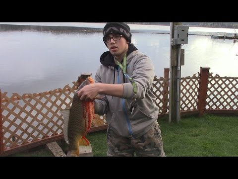 Fishing Crappie, Bluegill, Catfish, Trout, And Carp @ Silver Lake, WA.