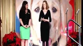 Blindness Etiquette Presentation