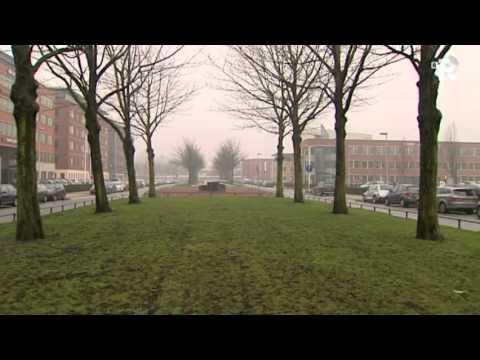 TV Rijnmond Nieuws van maandag 28 februari