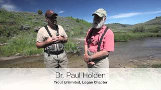 Cutthroat Trout Conservation Project at Temple Fork