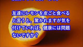 小倉優子2006.