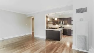 Tour A Corner One-bedroom At The Belmont By Reside