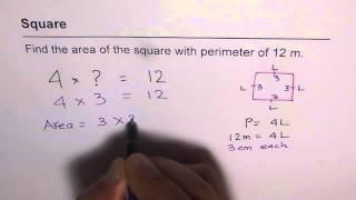 Find Area Square Given Perimeter