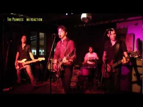 The Peawees - 9 Songs - Live - Goldener Salon - 2012