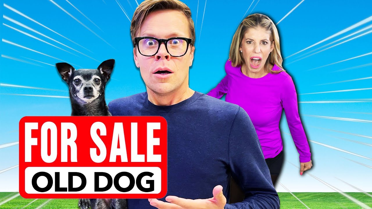 Being MEAN to Our Dog To See How Rebecca Reacts - PawZam Dogs