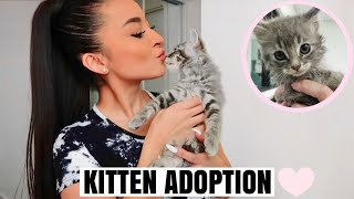I ADOPTED A KITTEN!! *8 weeks old* COME WITH ME!!♡