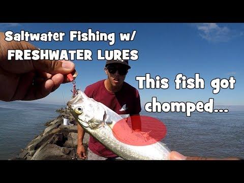 SALTWATER Fishing w/ FRESHWATER LURES! ft. Symplex Fishing (Wildwood Crest, NJ)