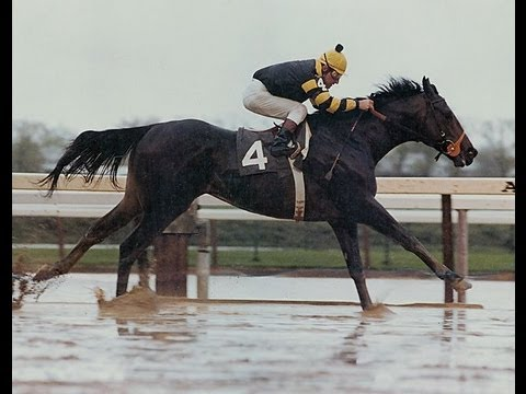 Seattle Slew - Full Documentary