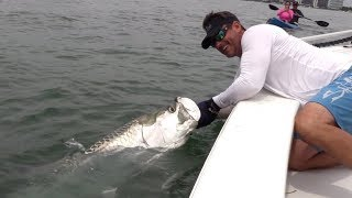 MUST-SEE Tarpon Catch In Downtown Miami! (Peter Miller Fishing)