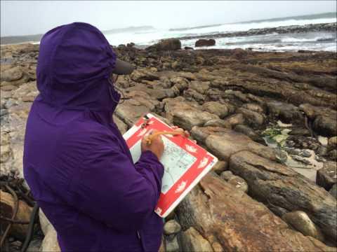 ECU Summer Abroad Cape Town 2014