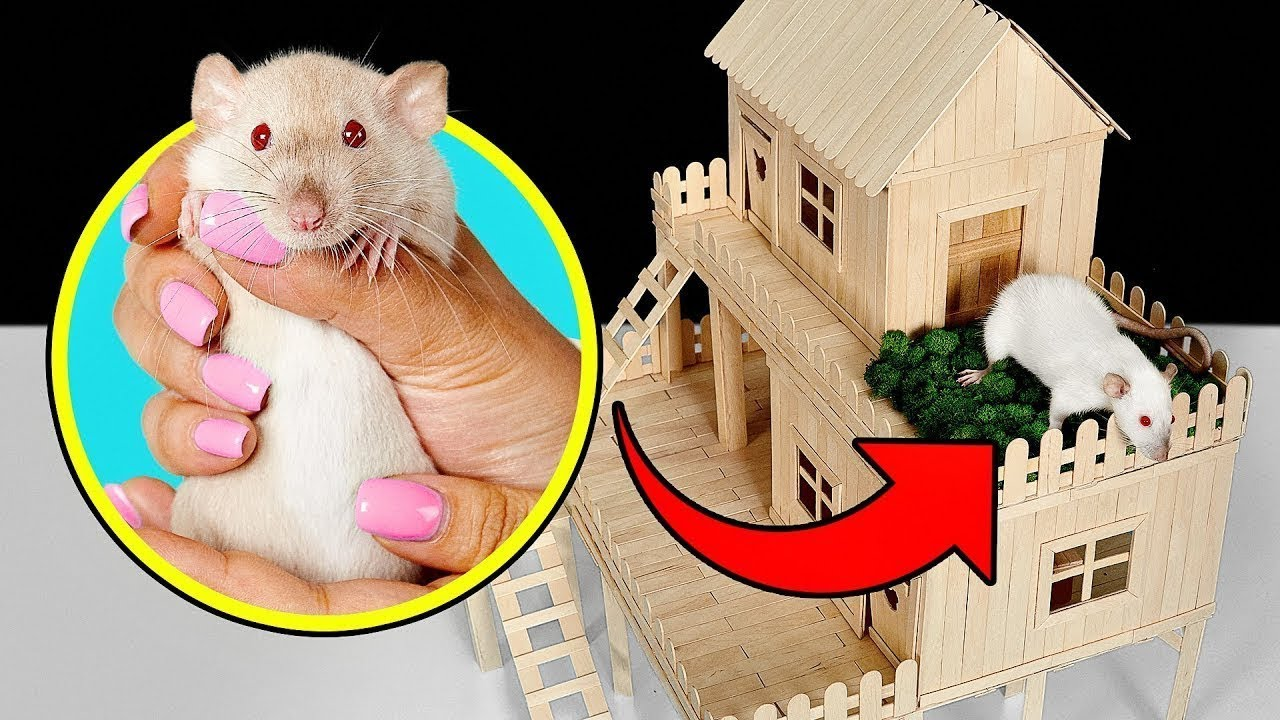 Como fazer uma casinha de ratos com palitos de picolé