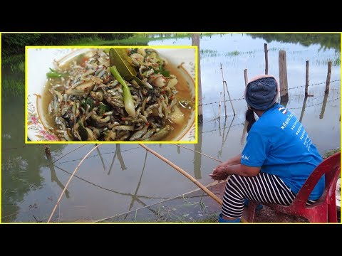 Traditional fish and Fish to cook Laos recipes.