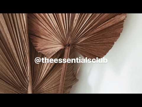 DIY Easy Palm Decor   The Essentials Club