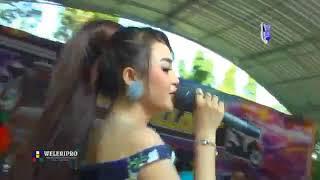 Download lagu Full Album JIHAN AUDY Aku Cah Kerjo terbaru NEW PALLAPA MP3