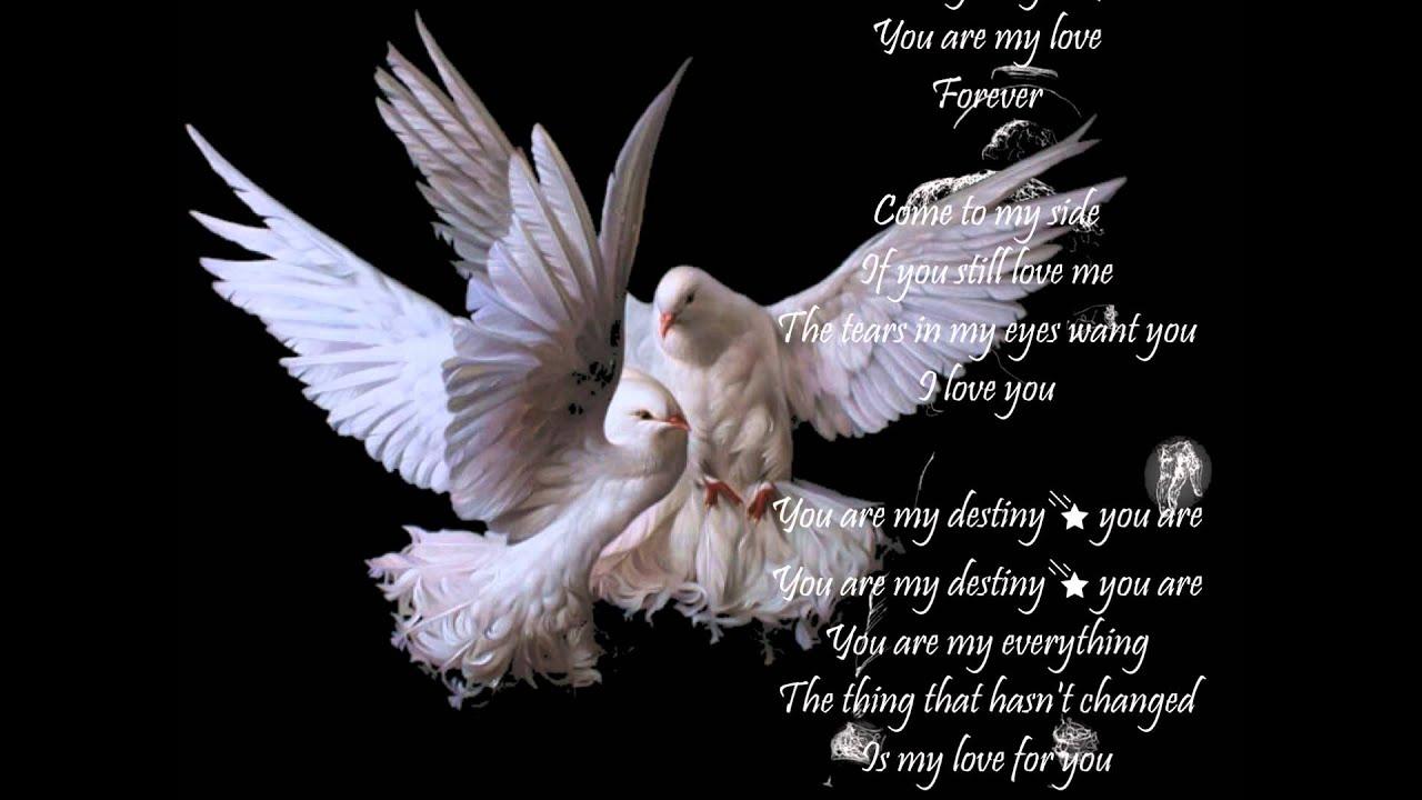 My Destiny 💕 Lyn 💕 *English Lyrics*