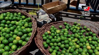 بعد وصول سعر الليمون لـ٤٠ جنيه.. مواطنة: سبب الزيادة البياعين