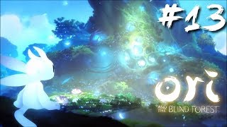 Let's Play Ori And The Blind Forest: Definitive Edition | Part 13