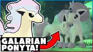 NEW POKEMON REVEALED! GALARIAN PONYTA! POKEMON SWORD AND SHIELD HUGE NEWS!