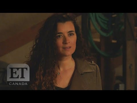 Cote De Pablo Returns In 'NCIS' Shocker