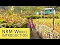 Natural Resource Management Works Introduction