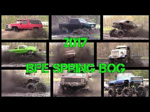 BFE Spring Bog 2017