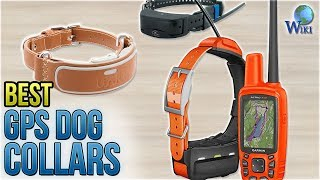 7 Best GPS Dog Collars 2018