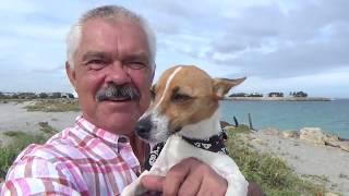 376. Pies i ja (2)