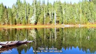 Virtual Hike: Fall Colors, Forest Pond, 12min