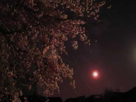祇園小唄 GIONKOUTA - YouTube