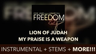 LION OF JUDAH (EDDIE JAMES) - INSTRUMENTAL
