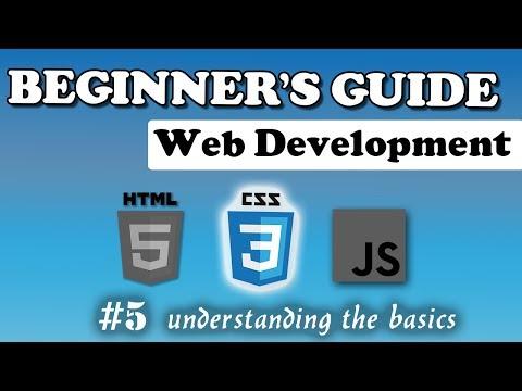 CSS - The Basics | Beginner's Course | #5
