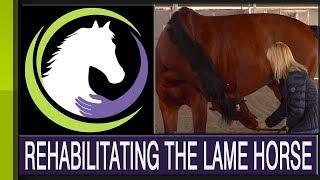 Rehabilitating the Lame Horse: Mind, Body & Spirit (Part four of a four part series) thumbnail