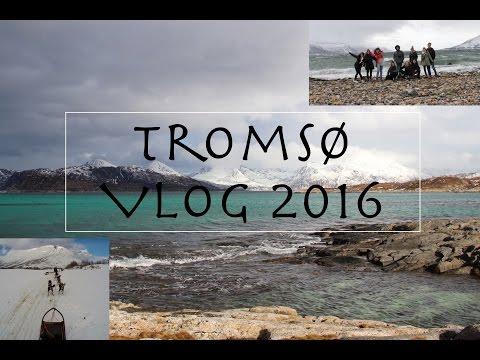 Winter WONDERLAND - TROMSØ, NORWAY in 3 days