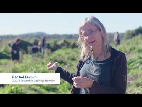 NZI Business Insurance for a growing New Zealand