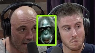 Joe Rogan Talks Lion-Killing Chimps, Terror Birds, and More