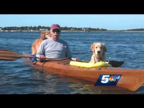 kayak dog platform