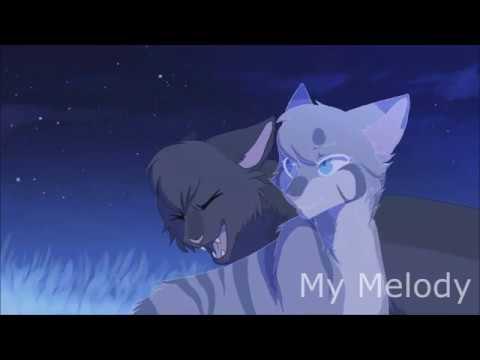 Коты-Воители - Миру Мир